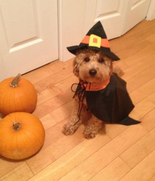 Lilah the witch!